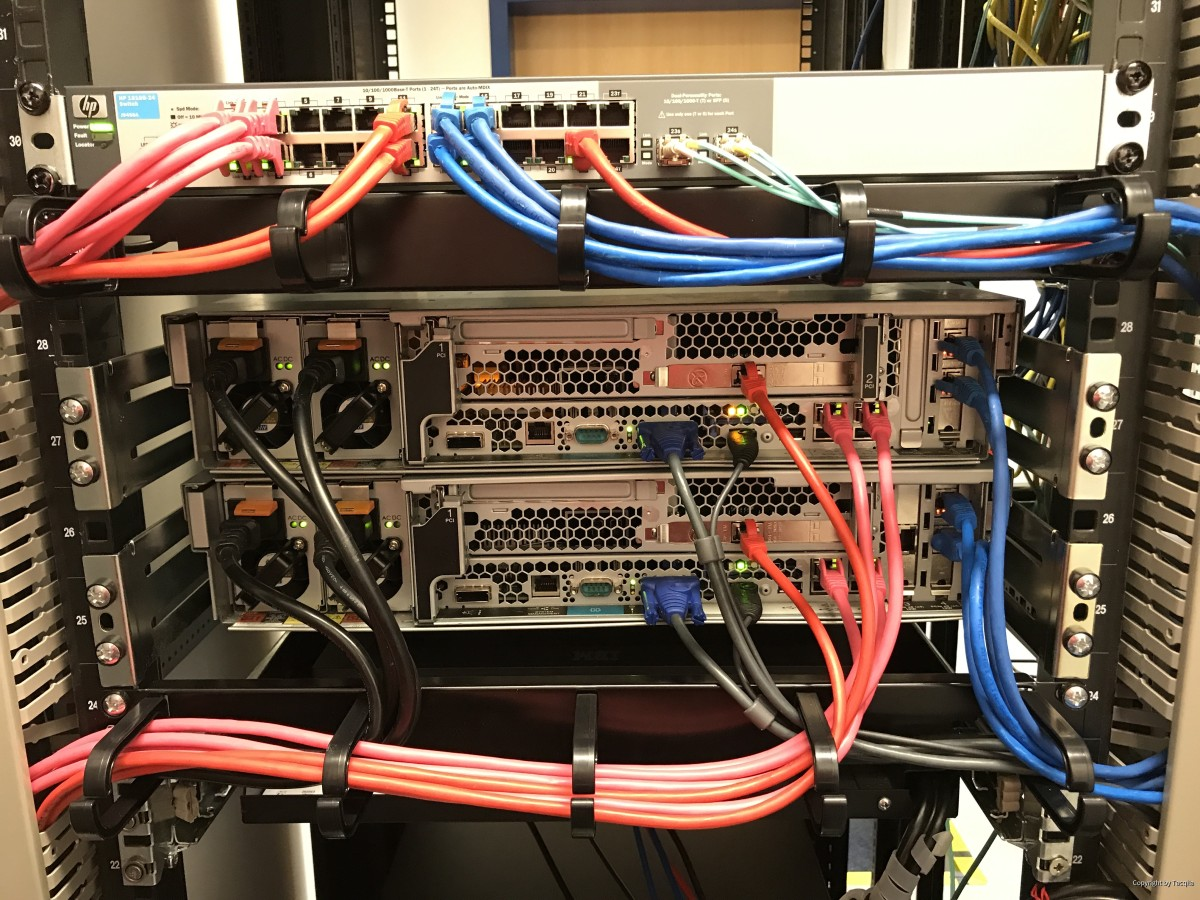 Netzwerk (2)